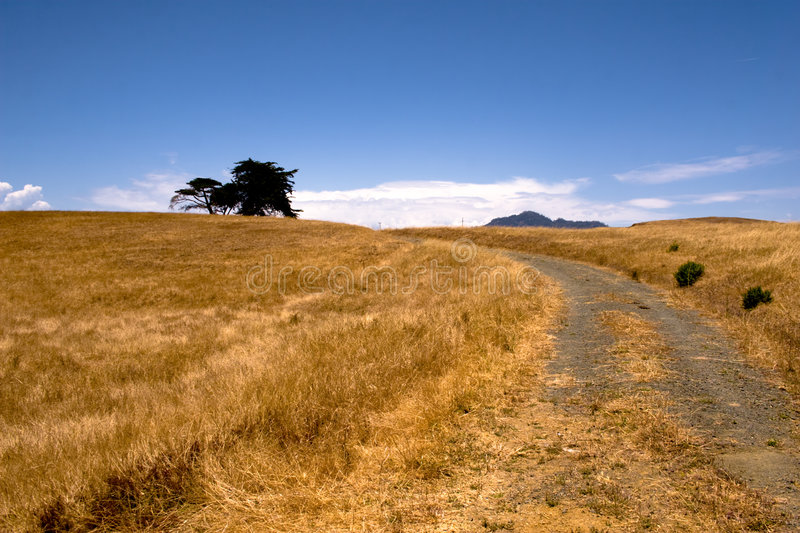 Download Track Through Countryside Stock Images - Image: 7004184