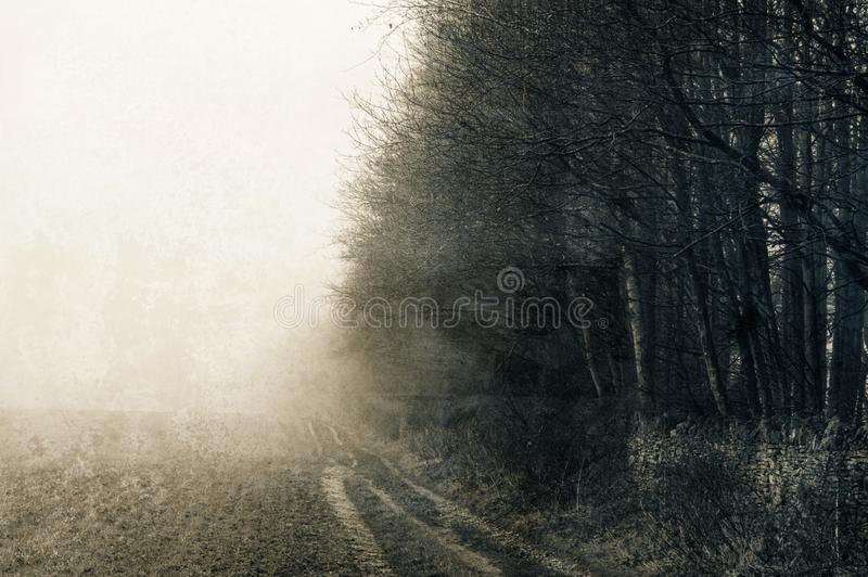 A track on the edge of a field next to a forest of winter trees on a foggy, moody day. A grunge weathered, blurred, abstract edit. stock photo