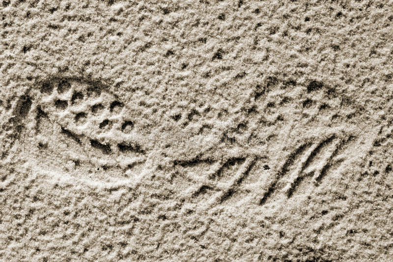 Track shoes in the sand. Soled shoes embossed in moist sand royalty free stock photos