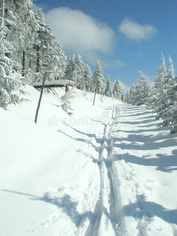 Download Track in the snow stock image. Image of blue, nature - 13214835