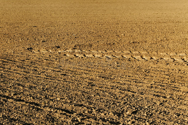Track on soil. stock photography