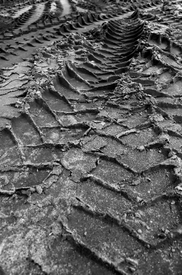 Tracks. In the mud stock image