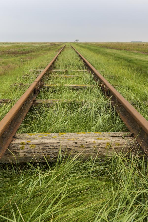 Tracks align at horizon. With old wooden ties on a grass dam royalty free stock images