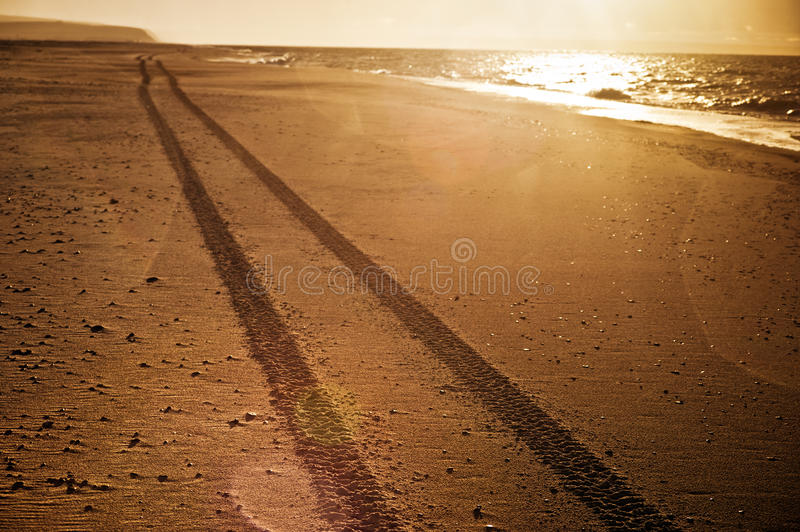 Download Tracks on the beach stock image. Image of sunshine, rain - 28012081