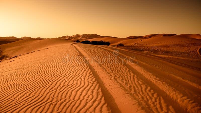 Tracks Through Desert Free Public Domain Cc0 Image