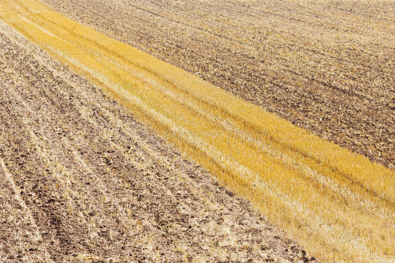 Tracks In A Field Stock Photography