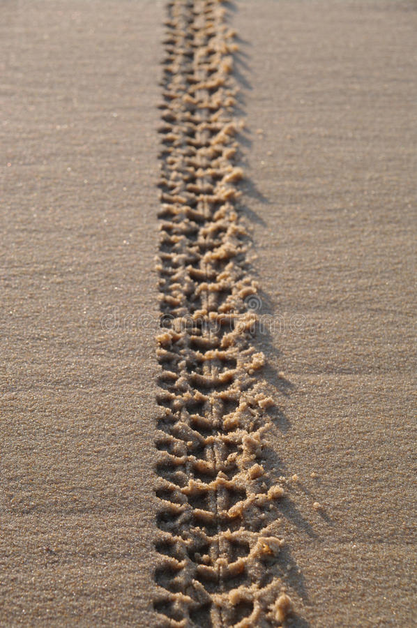 Download Tracks On Sand stock photo. Image of trace, cross, adventure - 28532134