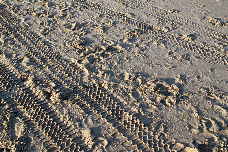 Tracks on sand in a beach royalty free stock photo
