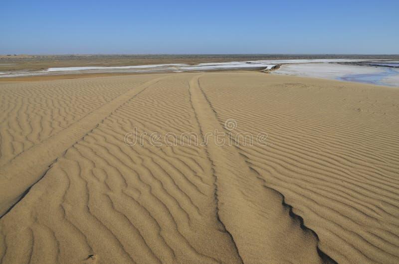 Tracks On A Sand Dune. Stock Photo