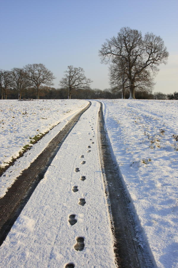 Tracks in snowy countryside royalty free stock images