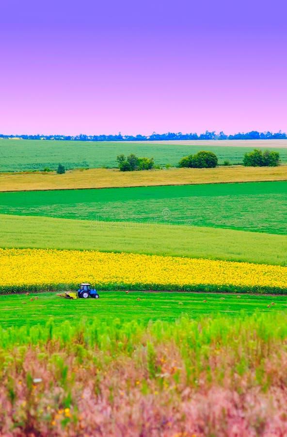 Tracteur au champ photographie stock