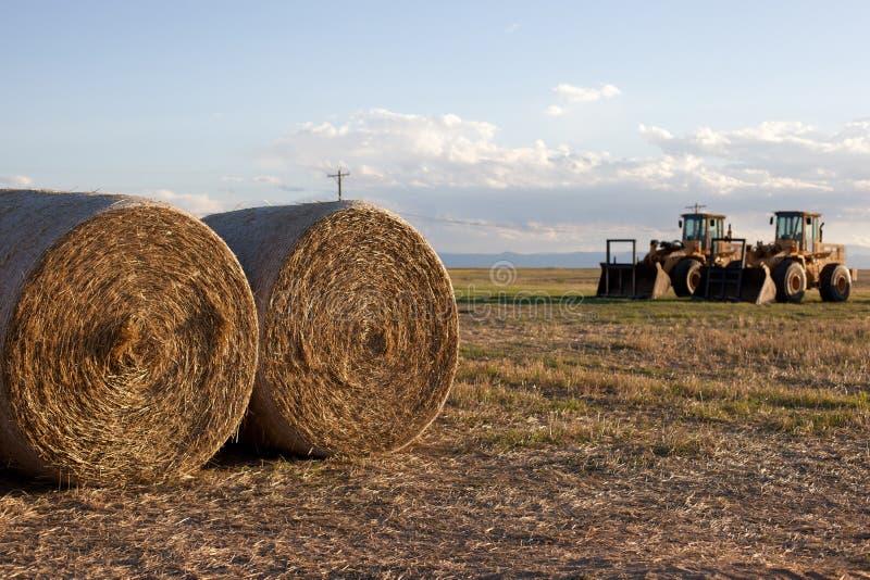 Tracteur dans un domaine frais de foin de coupe image libre de droits