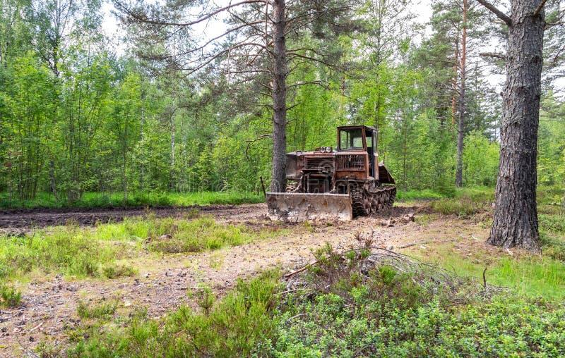 Tracteur de ensabotage pour l'industrie de bois de construction à la forêt photo stock