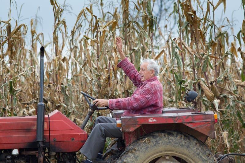 Tracteur de l'homme supérieur OD photographie stock