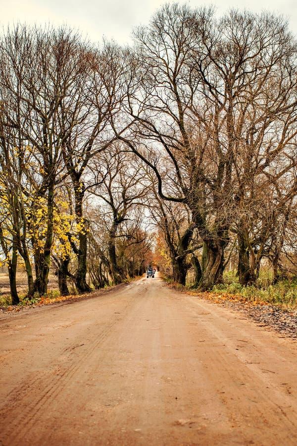 Tracteur de paysage de conte de fées sur la route entre les voûtes des arbres dans le village de ferme d'automne photographie stock