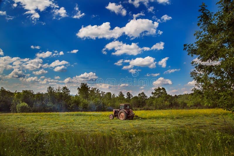 Tracteur travaillant au champ dans un jour d'été images libres de droits