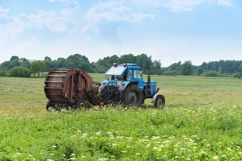 Tractor bale hay in field, blue tractor to collect hay in bales. Blue tractor to collect hay in bales, tractor bale hay in field, Slavsky district, Kaliningrad stock photo