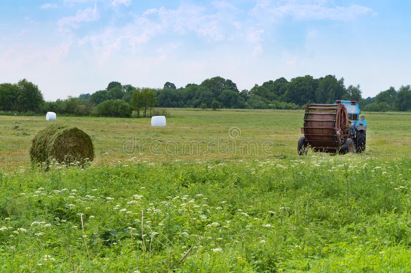Tractor bale hay in field, blue tractor to collect hay in bales. Blue tractor to collect hay in bales, tractor bale hay in field, Slavsky district, Kaliningrad royalty free stock image