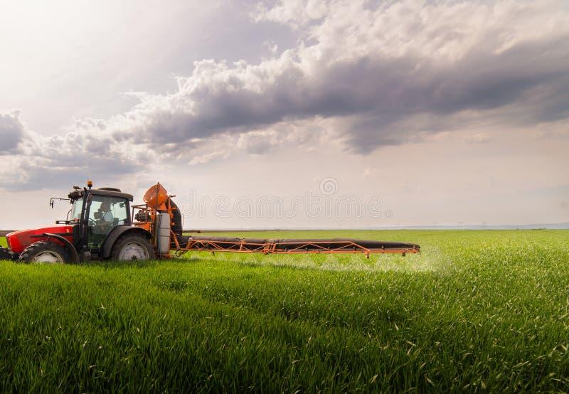 Tractor bespuitende pesticiden op tarwegebied met spuitbus bij sprin stock afbeelding