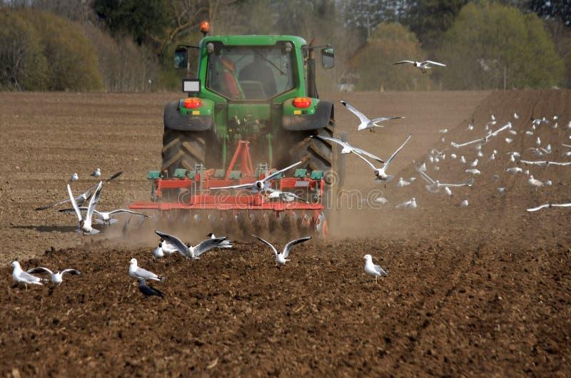 Tractor bij gebied royalty-vrije stock foto's