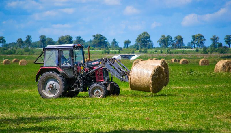 Tractor carrying hay bale rolls and collecting them on a field. Red tractor carrying hay bale rolls - stacking them on pile. Agricultural machine collecting stock images