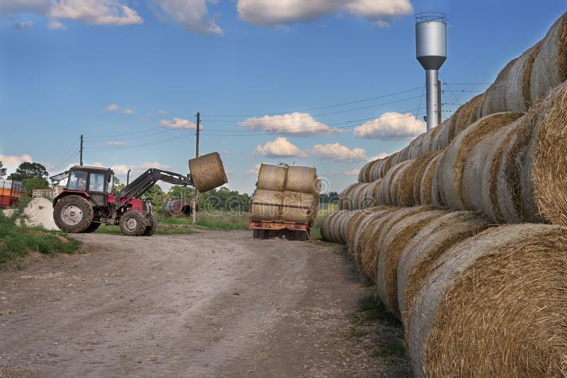 Tractor carrying hay bale rolls - stacking them on pile. Agricultural machine collecting bales of hay on a field. Farm industry , business of farmer stock photo