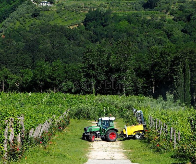 Tractor con el remolque entre los viñedos fotos de archivo