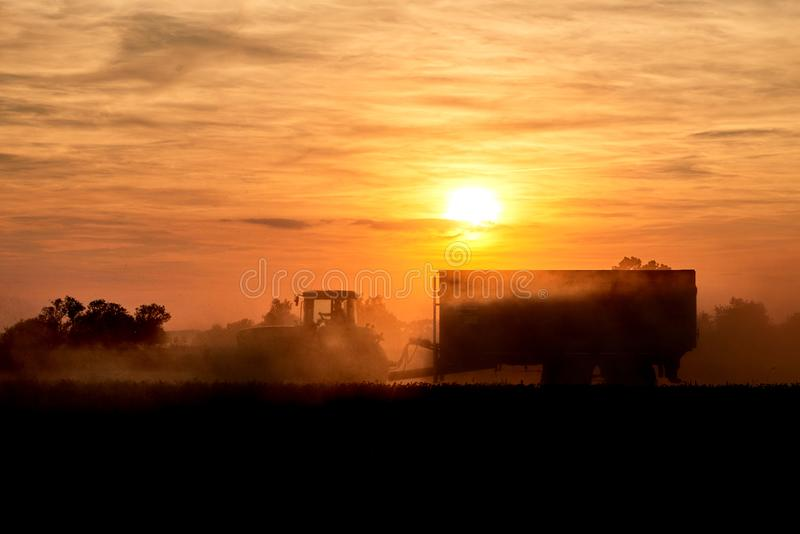 Tractor with corn trailer in sunset. Field agriculture land machine landscape nature harvest food equipment farm farming combine work grain golden countryside royalty free stock photos