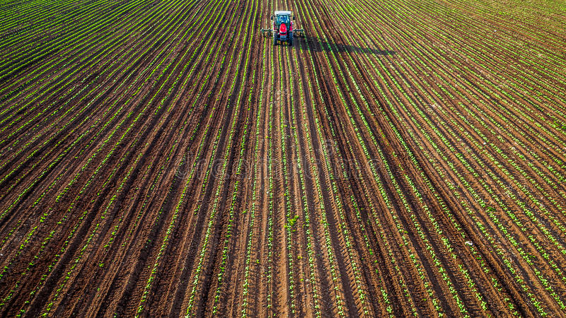 Tractor cultivating field at spring royalty free stock images