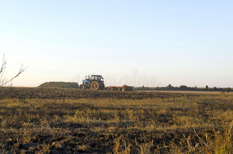 Tractor cultivating wheat stubble field with crop residue stock image