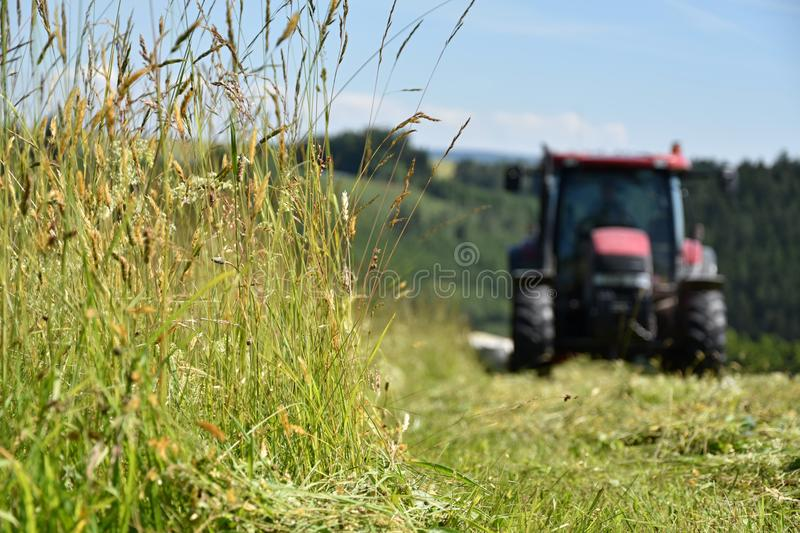 The tractor cuts the grass on the meadow. Focus on grass. Agriculture stock photos