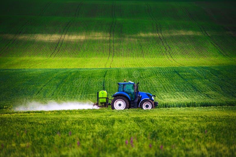 Tractor de cultivo que ara y que roc?a en campo de trigo verde imagen de archivo libre de regalías