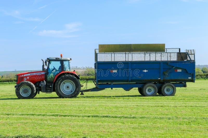Tractor de Massey Ferguson que tira de un remolque en campo de hierba foto de archivo