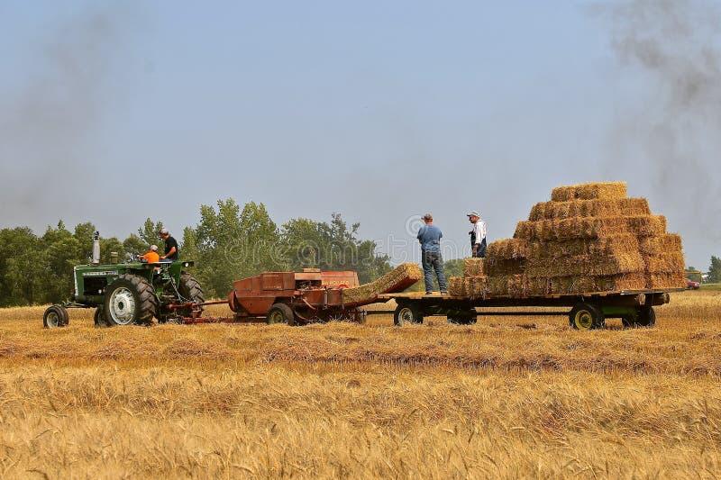 Tractor de Oliverio y nueva prensa de Holanda que cosechan el heno imagen de archivo libre de regalías