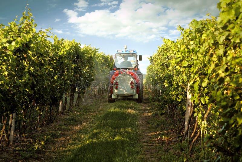 Tractor in de wijngaard stock fotografie