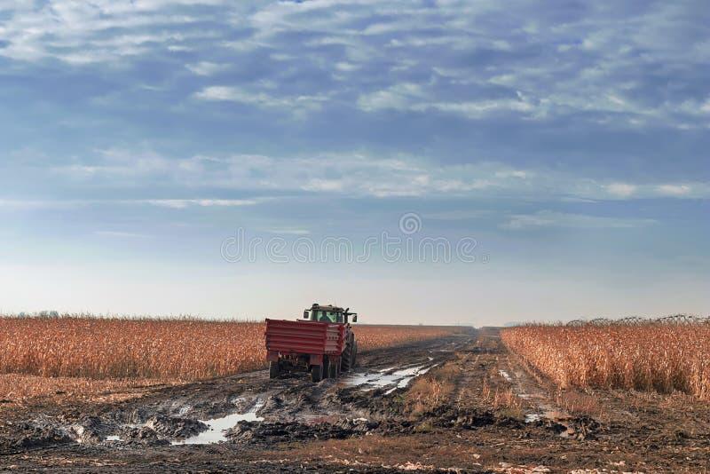 Tractor die op graangebied bewerken De Oogstlandbouw c van het graangebied stock fotografie
