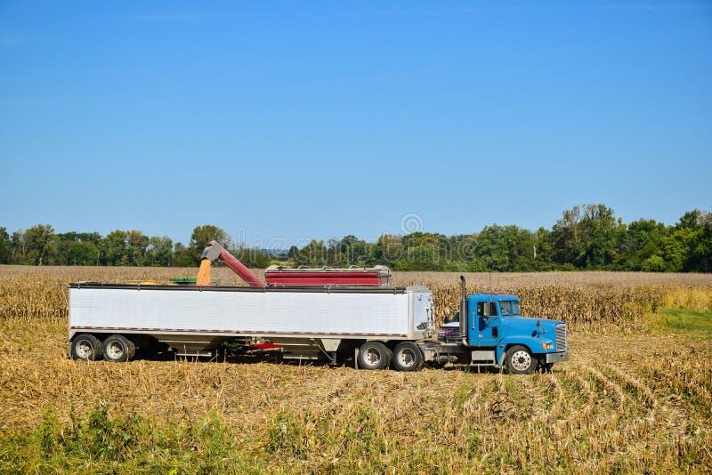 Tractor die zijn lading van geoogst graan leegmaken stock afbeelding
