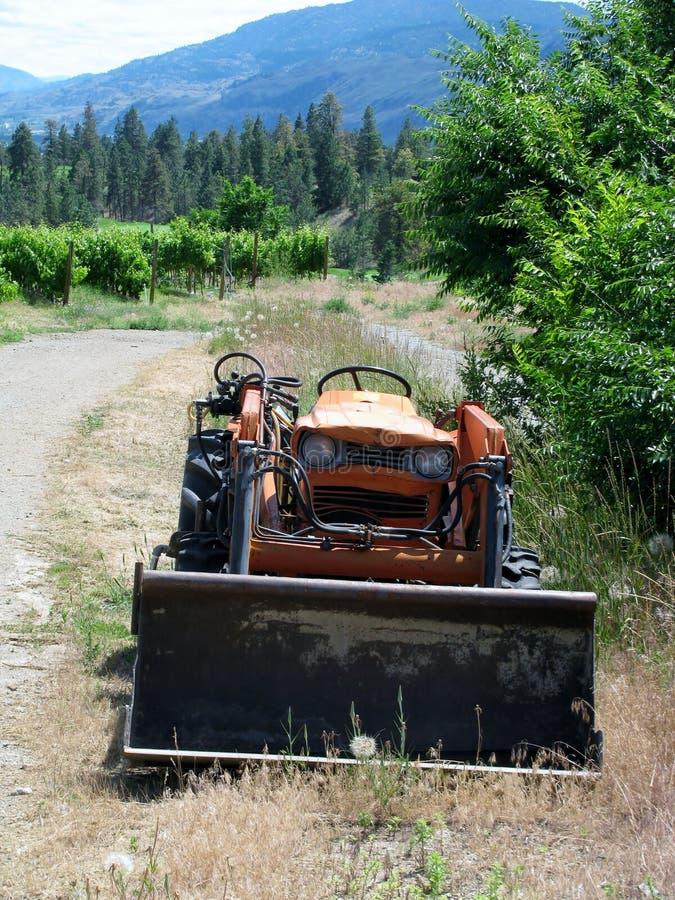 Tractor enojado en los viñedos imagen de archivo libre de regalías