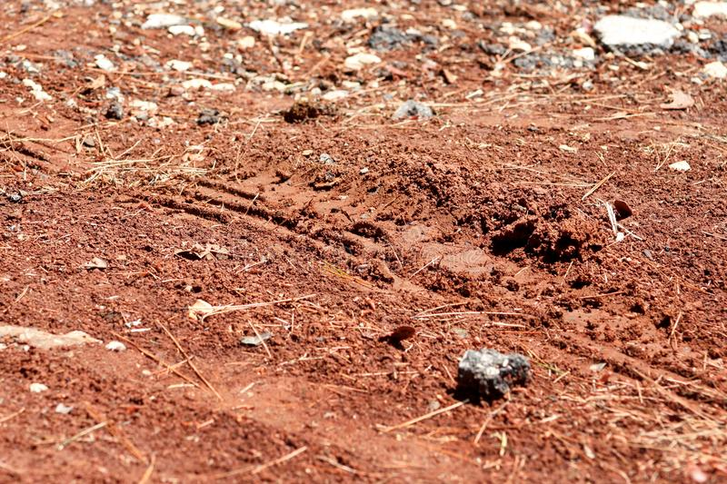 Tractor, excavator, car, automotive tire tracks on muddy trail. Mud and wheel trace on road after rain. Mud with truck wheel track in rainy day. Background royalty free stock photos