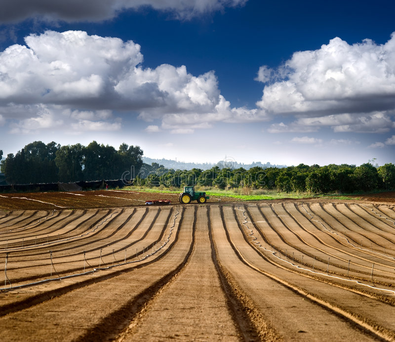 Download Tractor In A Field Stock Image - Image: 7292671