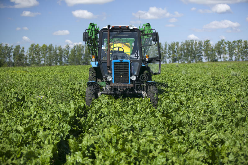 Download Tractor in green field stock photo. Image of food, agricultural - 19143872