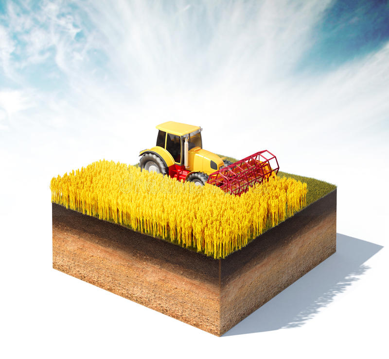 Tractor harvester harvesting wheat. 3d rendered illustration of tractor harvester harvesting wheat on a cross section of ground isolated on white stock illustration