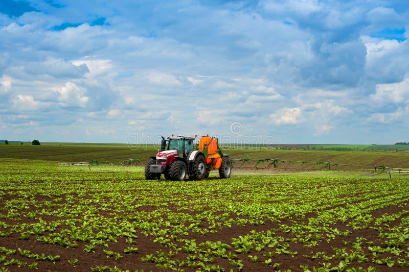 Tractor het bespuiten op plantaardig gebied met spuitbus bij de lente royalty-vrije stock afbeeldingen