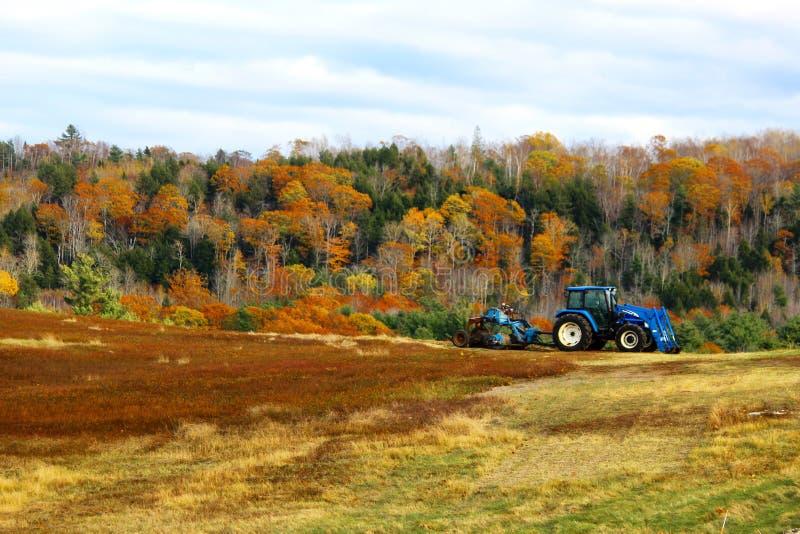Tractor op gebied met dalingsgebladerte royalty-vrije stock afbeelding