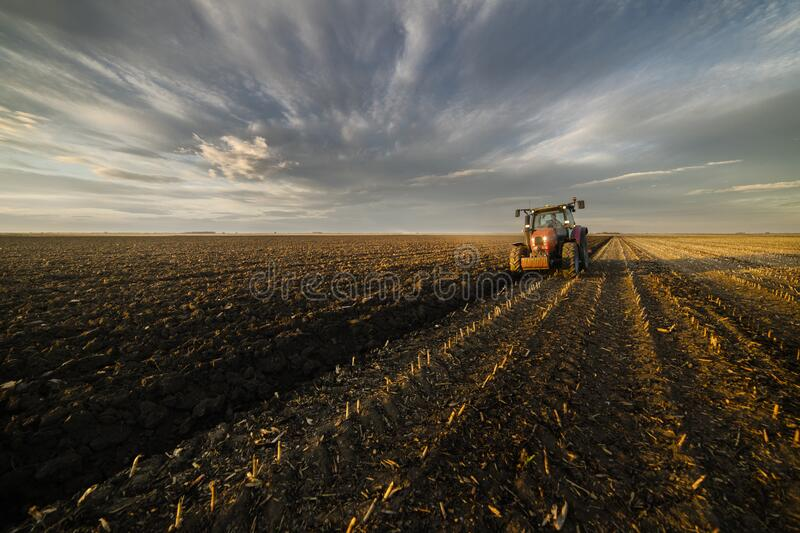 Tractor plowing fields in sunset stock images