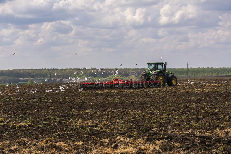 Tractor plows the field. A flock of birds circling over the field royalty free stock photo