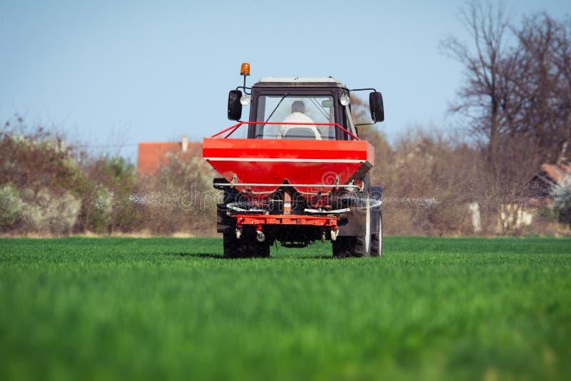 Tractor que fertiliza en campo de trigo imagen de archivo libre de regalías