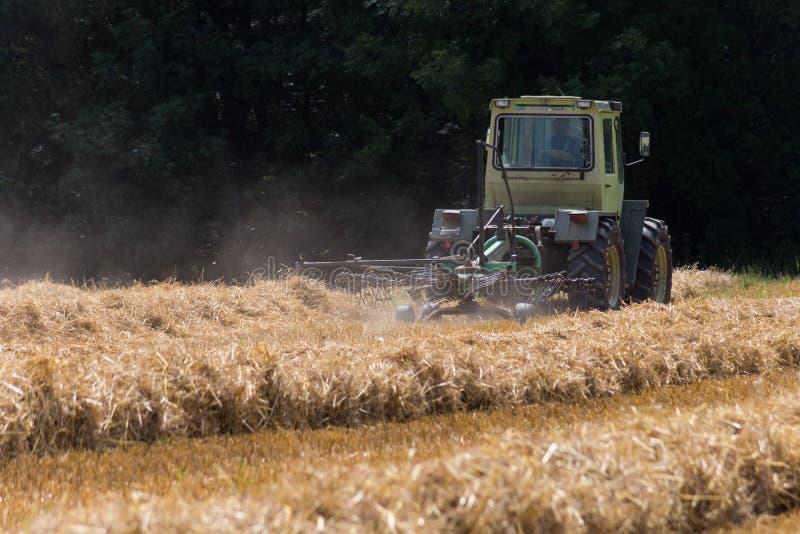 tractor que hace heno la paja en campo de maíz del verano foto de archivo libre de regalías