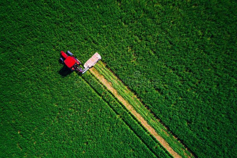 Tractor que siega el campo verde, visión aérea imagenes de archivo