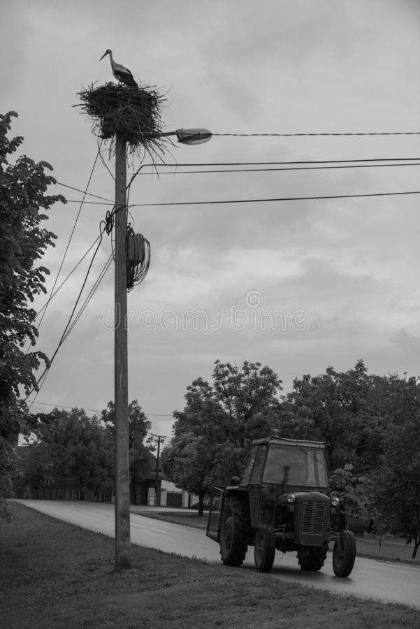Tractor on a Road and Stork on its nest royalty free stock photos